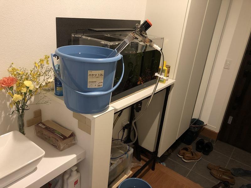 オーバーフロー水槽水換え(プロホースで水を入れる)