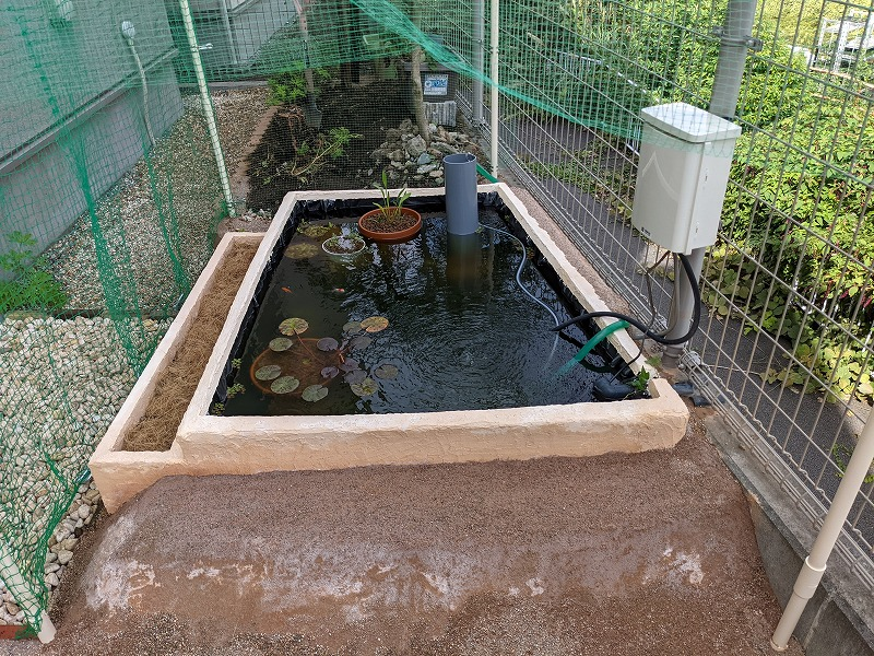 庭池DIY