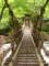 奥祖谷の二重かずら橋 女橋
