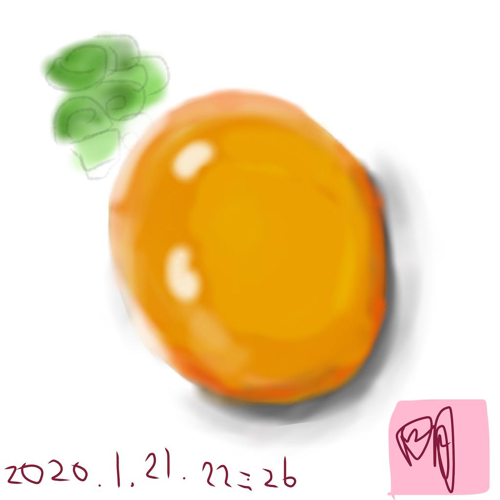 f:id:a91n52:20200121232611p:image