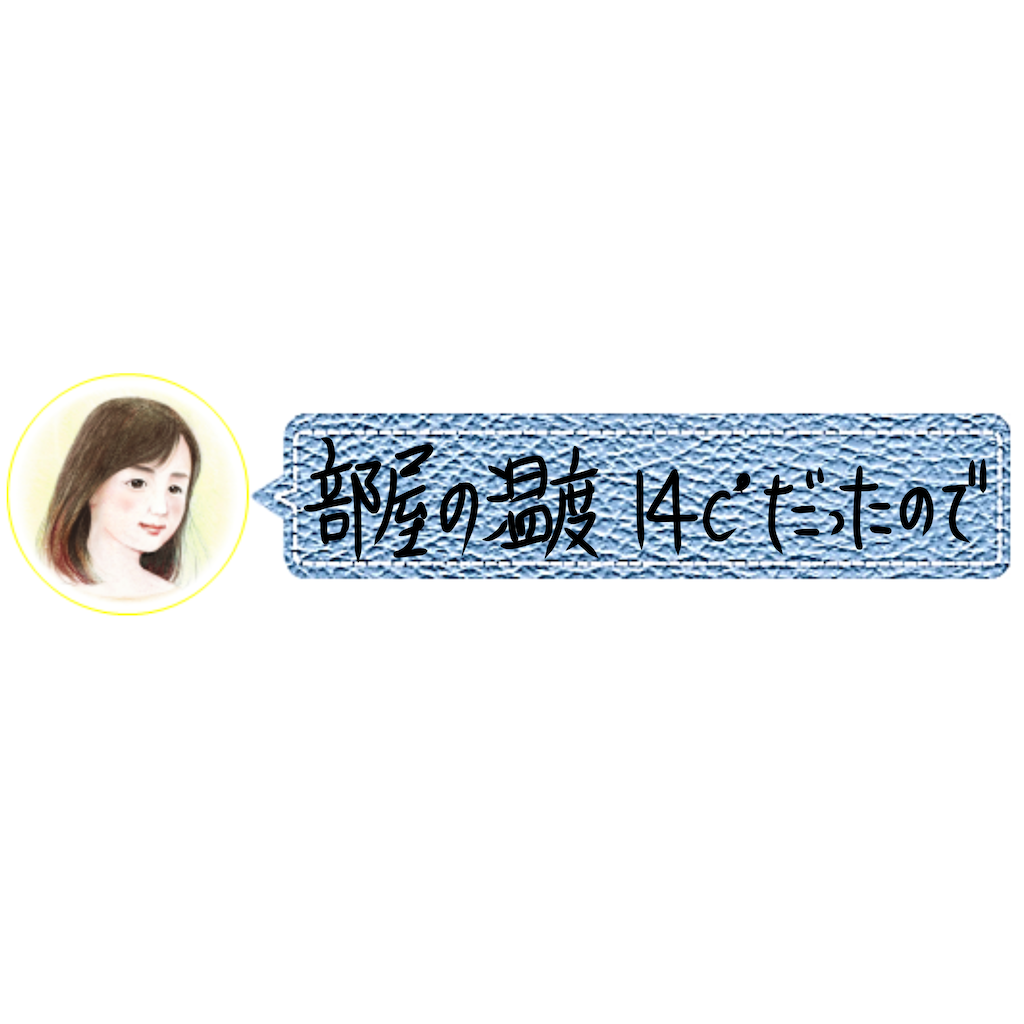 f:id:a91n52:20201201231556p:image
