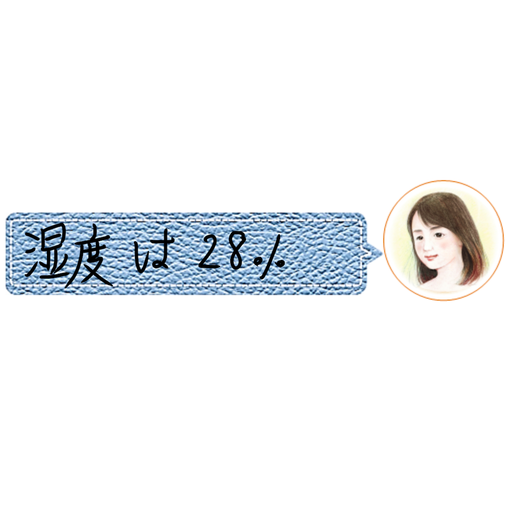 f:id:a91n52:20210110162253p:image