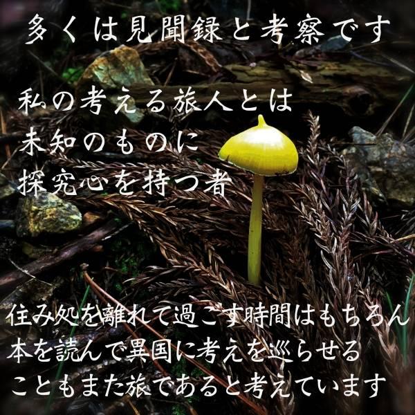 黄色いベレー帽型きのこ