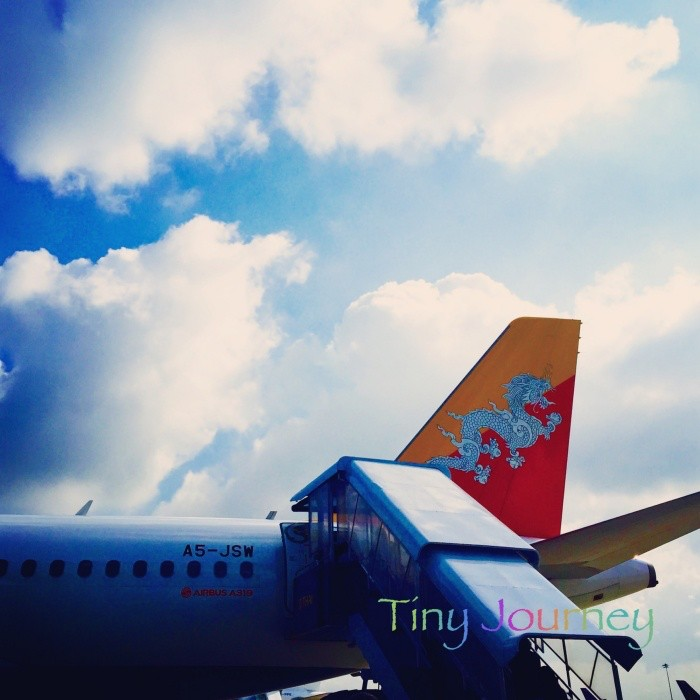 ロイヤルブータン航空の機体
