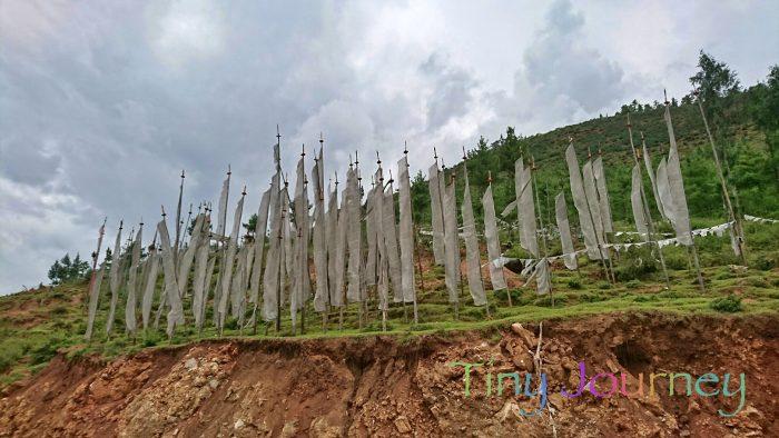 丘の上に立てられたおびただしい数の白い幟旗