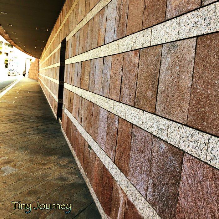 美術館裏の壁面