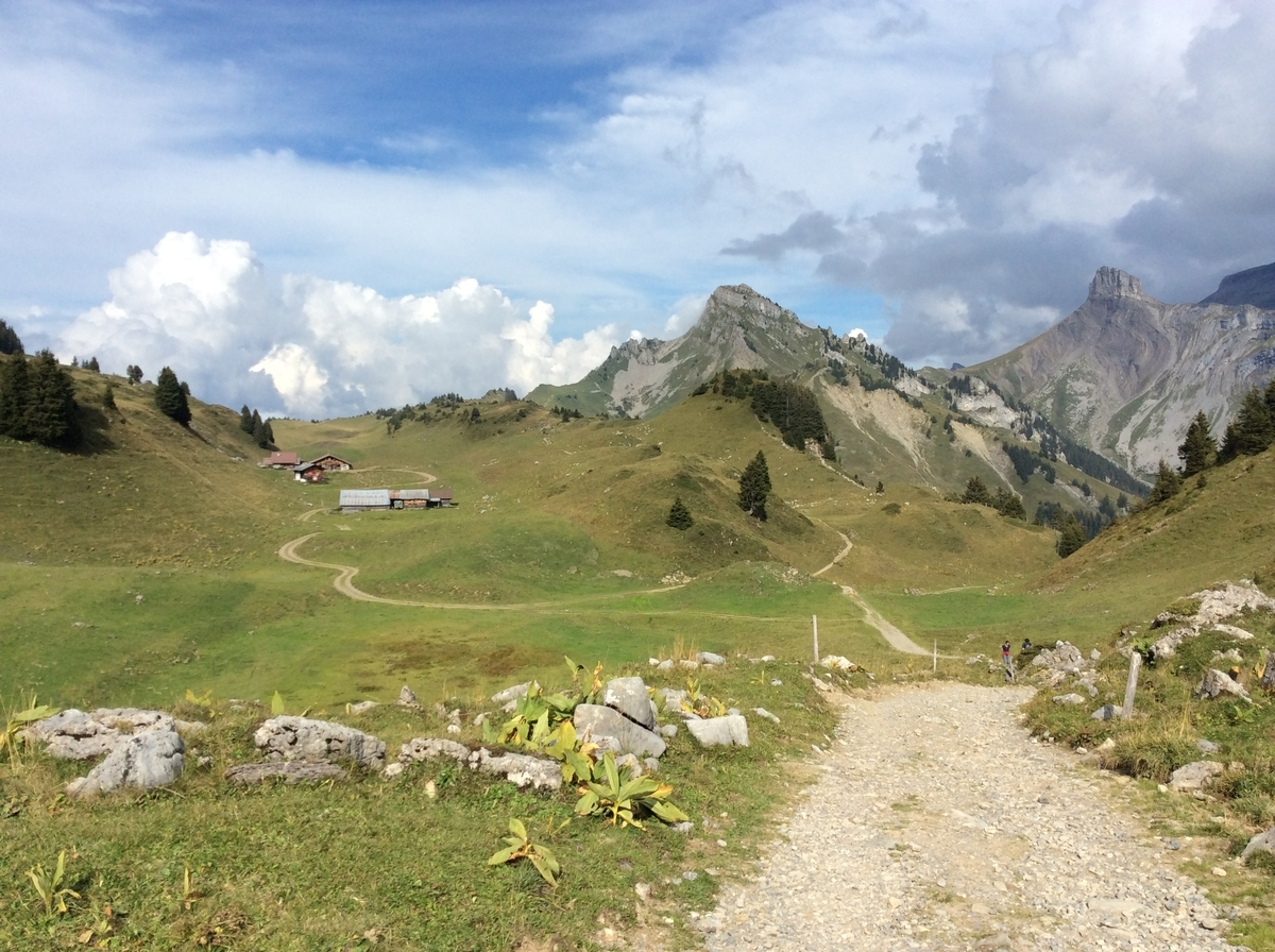 どこまでも続く道と遠くに見える山