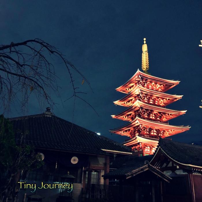 夜空に映える赤い五重の塔