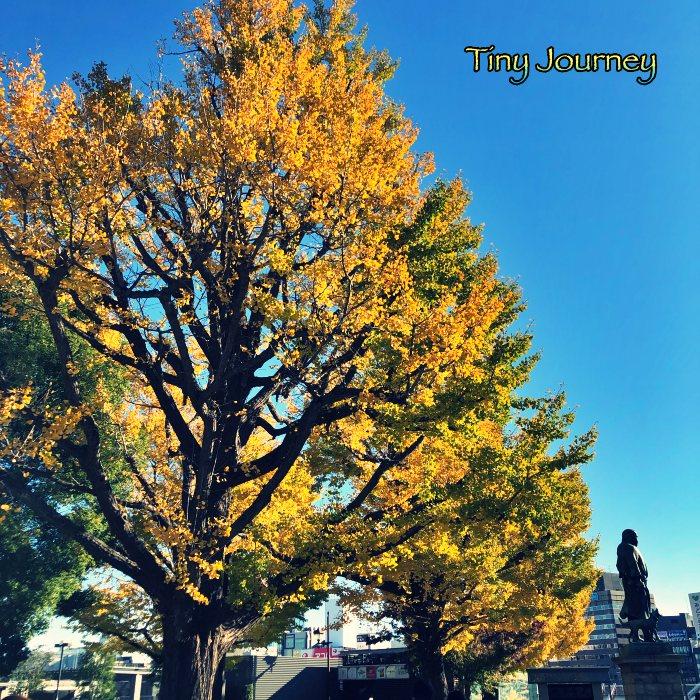 黃葉する大木と西郷隆盛像