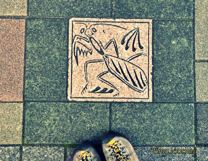 カマキリ柄の地面のタイル