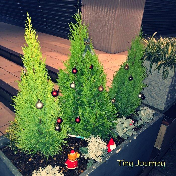 クリスマスのオーナメントを飾った小さな植木