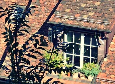 ベルンで見つけた風鈴を下げる家の窓