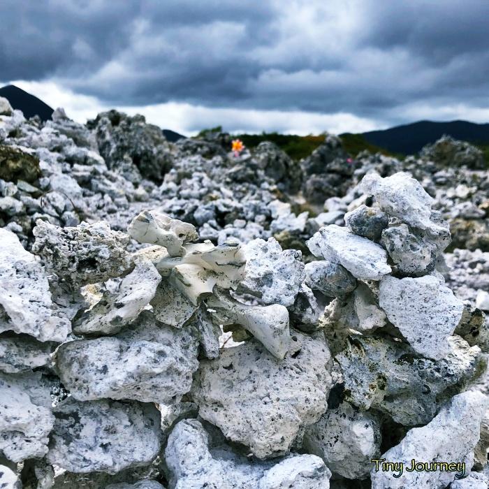 恐山界隈に積まれた白い石たち