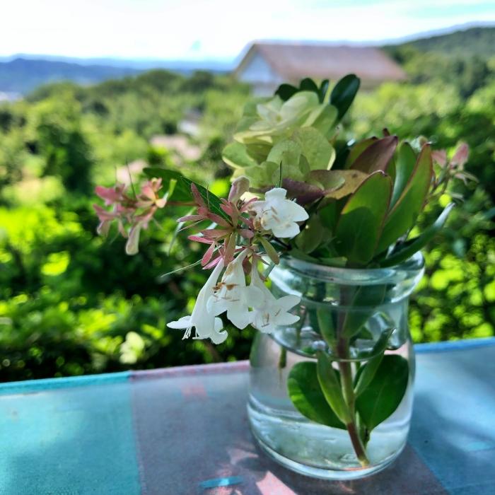 小さな瓶に生けられたお花
