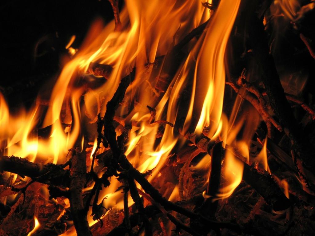 勉強用、作業用、安眠用に!焚き火の音BGM10選!(1時間以上) - 嗚呼、学習の日々