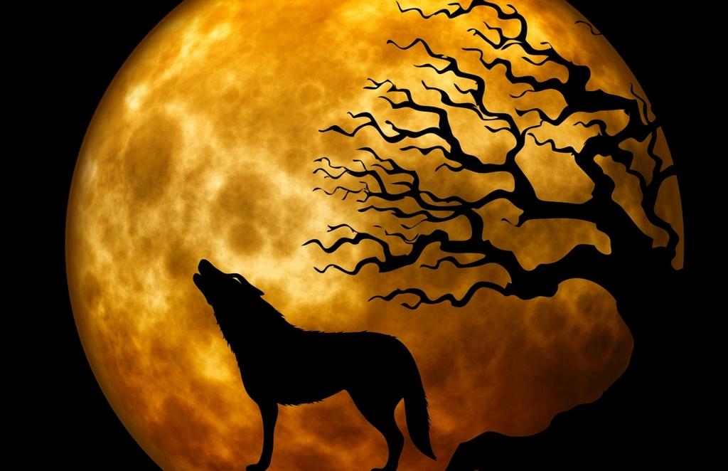 遠吠えする狼と大きな月
