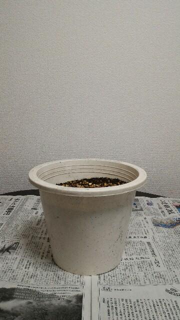 f:id:ababaikojiro:20170130123515j:plain