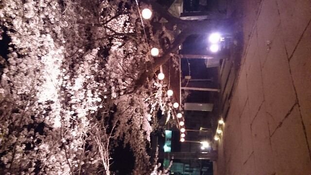 f:id:abe-kazuko-hope:20170421055234j:image
