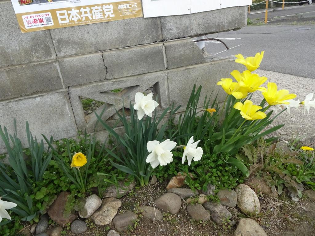 f:id:abe-yumiko:20170419164051j:plain