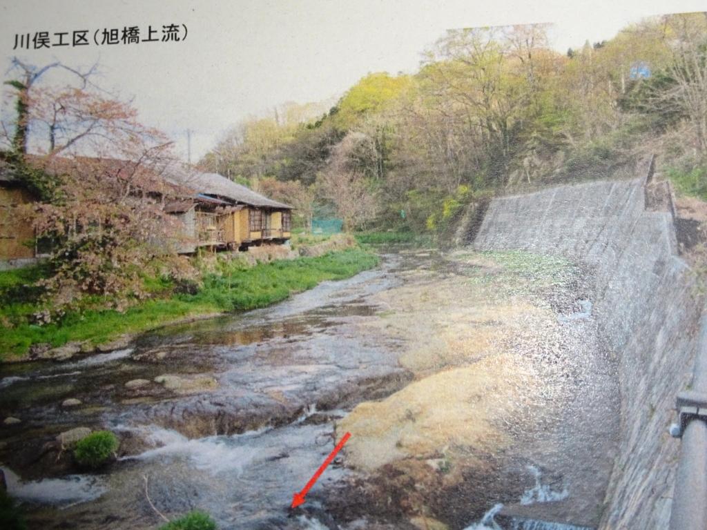 f:id:abe-yumiko:20180717160733j:plain