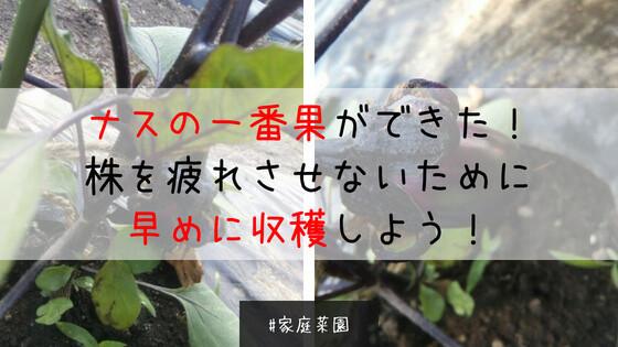 f:id:abeshi01:20180612005315j:plain