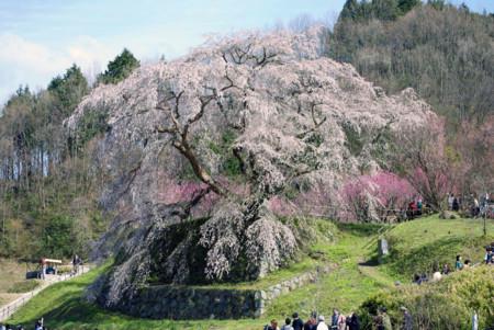 f:id:abeyoshi1969:20100404143904j:image