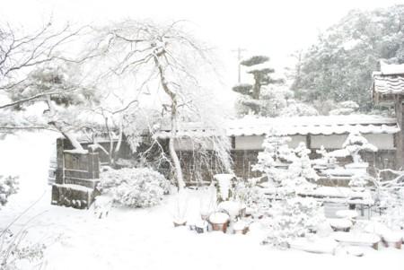 f:id:abeyoshi1969:20120104131430j:image:w360:left