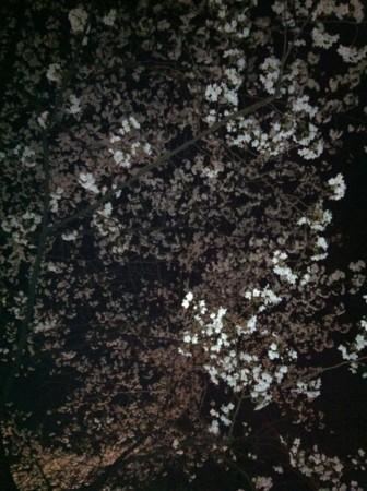 f:id:abeyoshi1969:20120408210301j:image