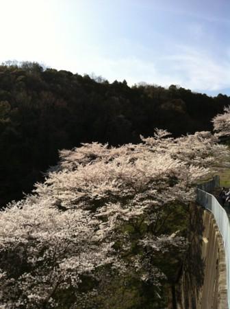 f:id:abeyoshi1969:20120412155218j:image