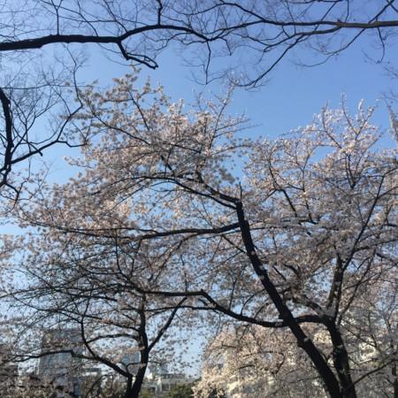 f:id:abeyoshi1969:20150331160958j:plain
