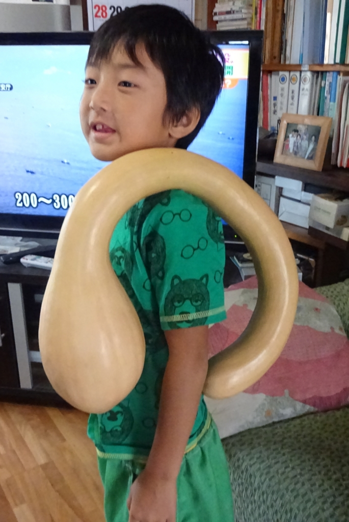 f:id:abeyumiko:20160819160659j:plain