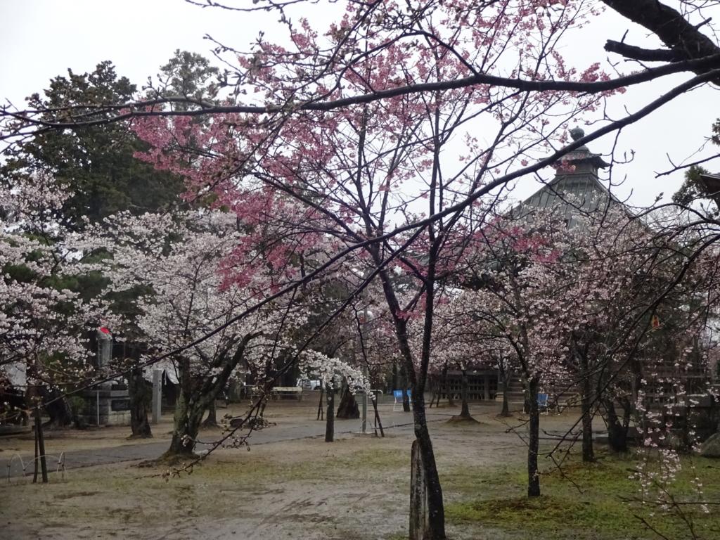 f:id:abeyumiko:20170412165235j:plain
