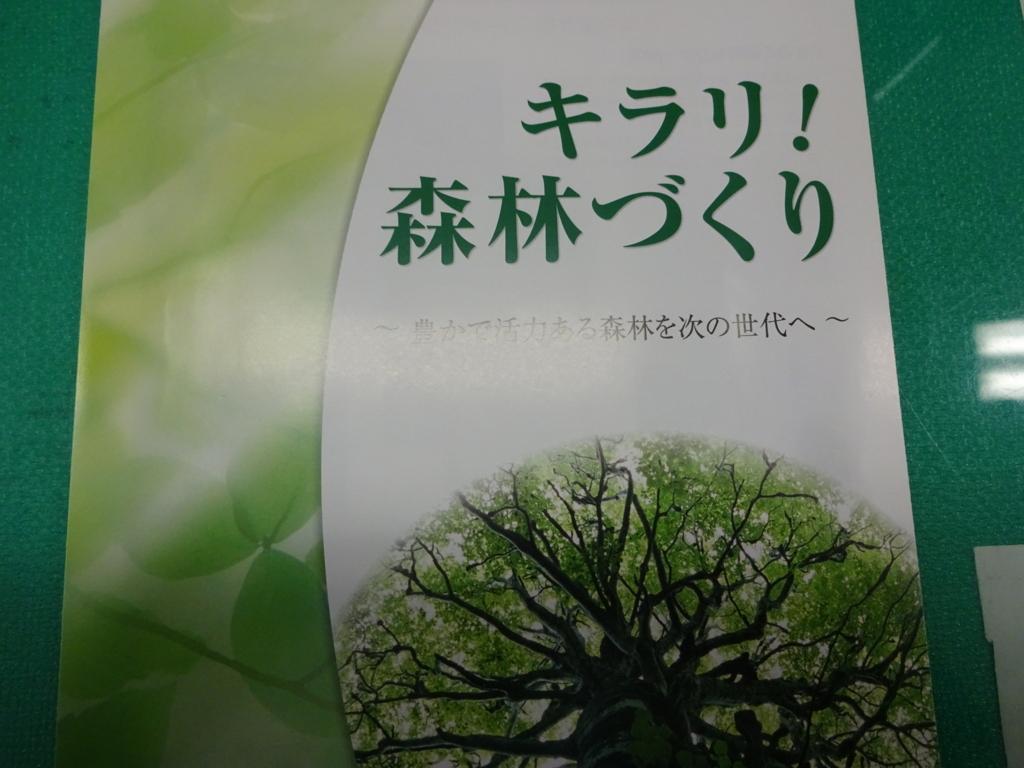 f:id:abeyumiko:20170612232208j:plain