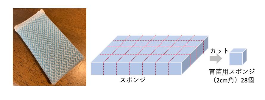 f:id:abist_maruyama:20210927152720p:plain