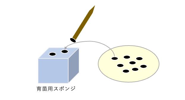 f:id:abist_maruyama:20210927152754p:plain