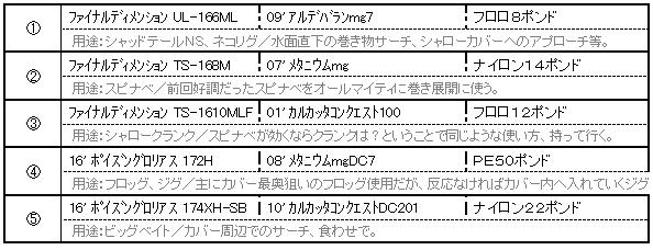 f:id:abnormality:20160623142037p:plain
