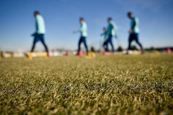 画像:ビノーボでトレーニングをする選手たち