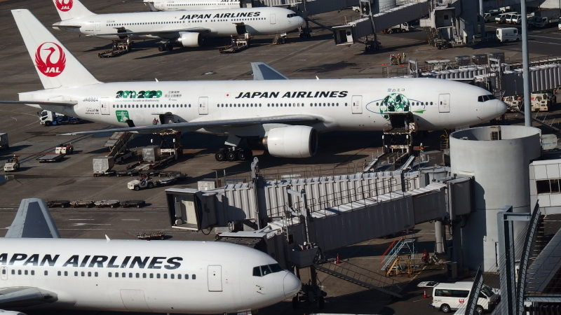 JAL エコ