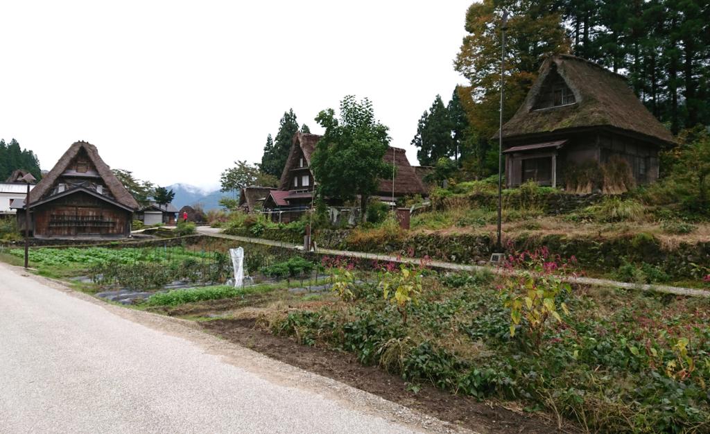五箇山合掌造り集落の風景4