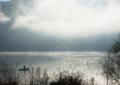 [河口湖]西湖 1