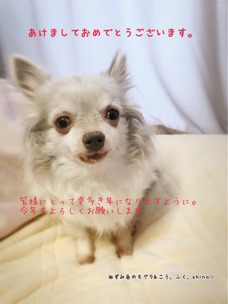 f:id:acsakura:20200101093217j:image