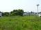 原宿・小雀の谷