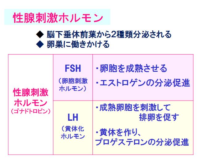 f:id:acu_qian-ming:20180115154401p:plain