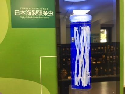 f:id:acu_qian-ming:20180702223111j:plain