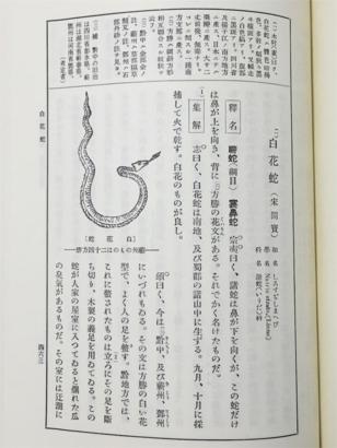 f:id:acu_qian-ming:20180708183710j:plain