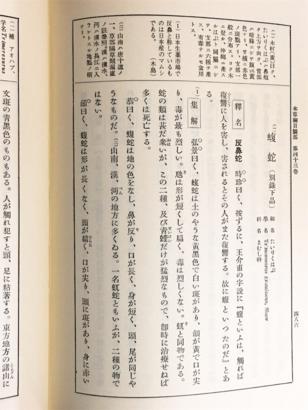 f:id:acu_qian-ming:20180708183822j:plain