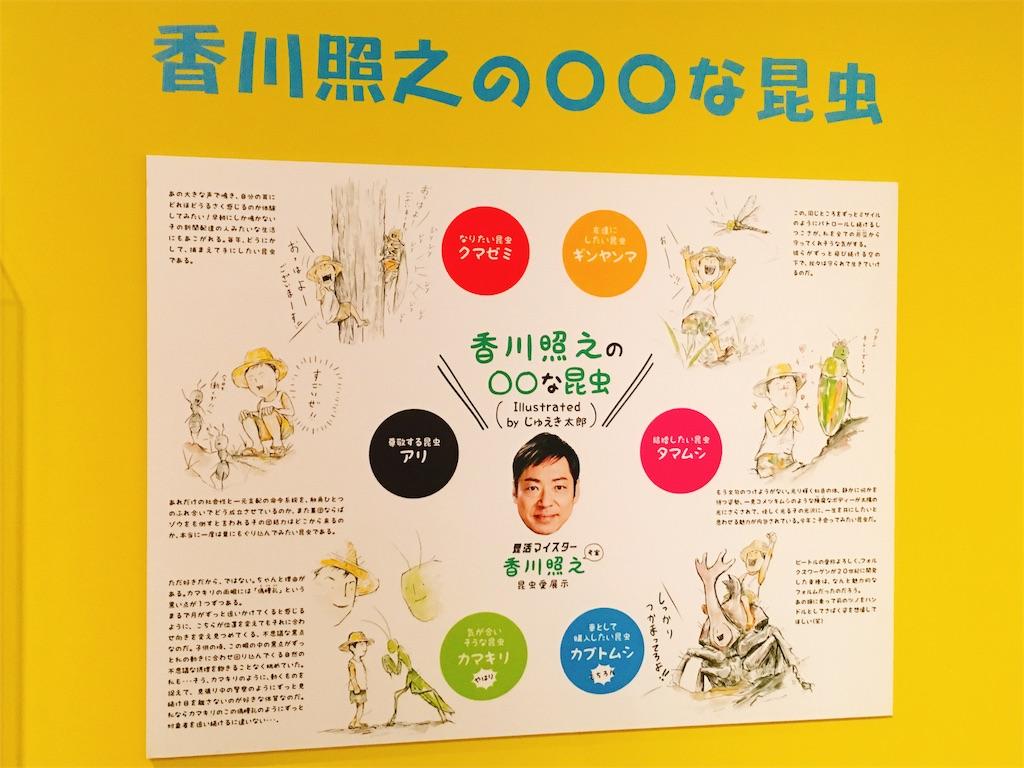 f:id:acu_qian-ming:20180816220912j:image