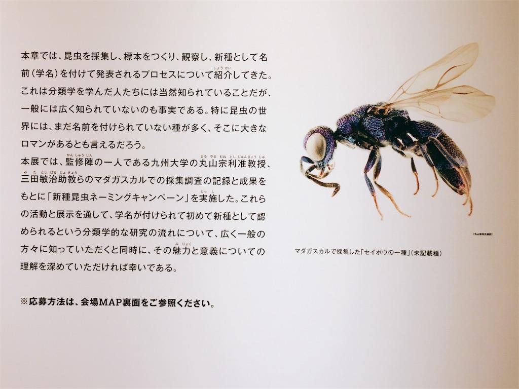 f:id:acu_qian-ming:20180816220924j:image