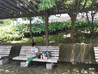 f:id:adagio-nijiiro:20180515220503j:image