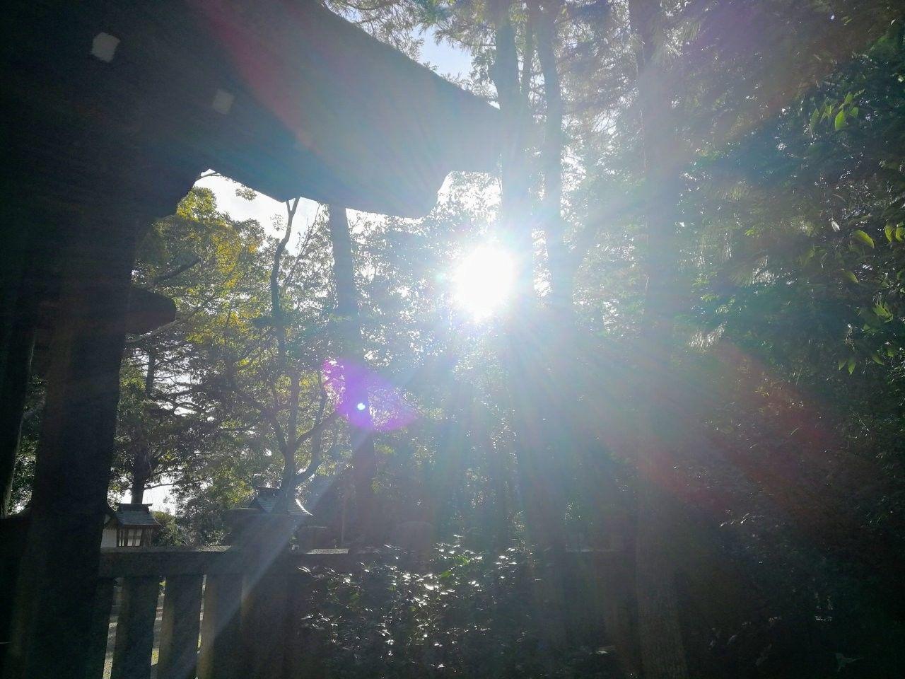 f:id:adagio-nijiiro:20190130205400j:image